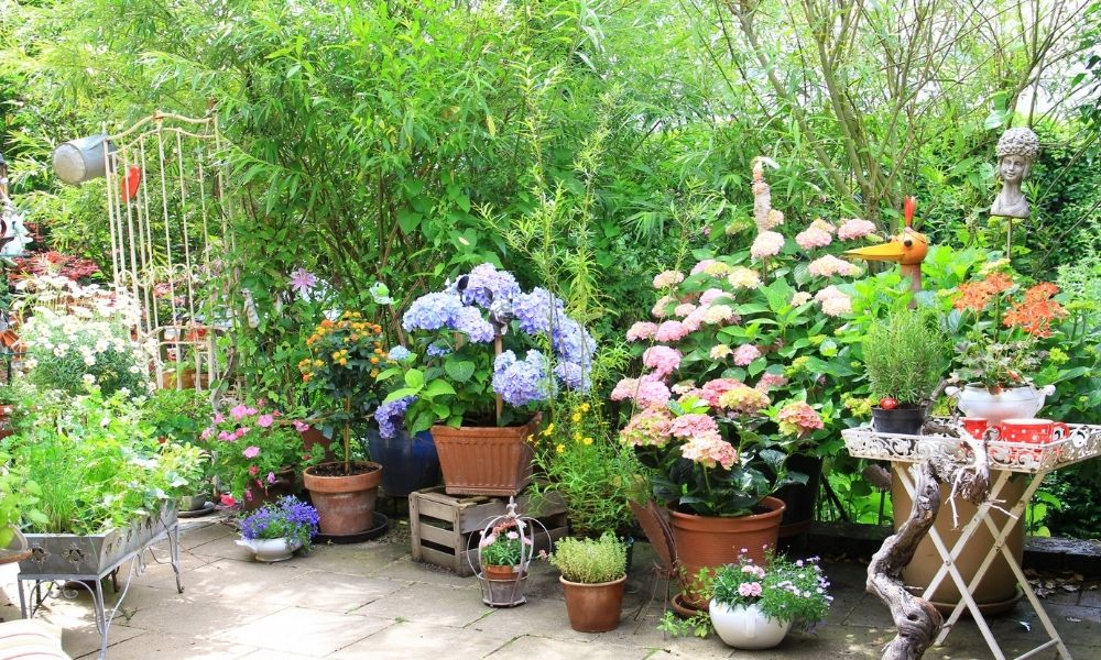 Tips for Growing a Healthy and Flourishing Garden